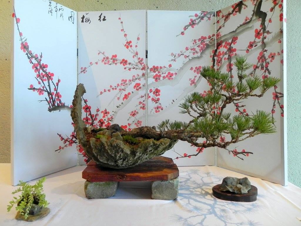 <p>Photo courtesy of the Nashville Bonsai Society</p>