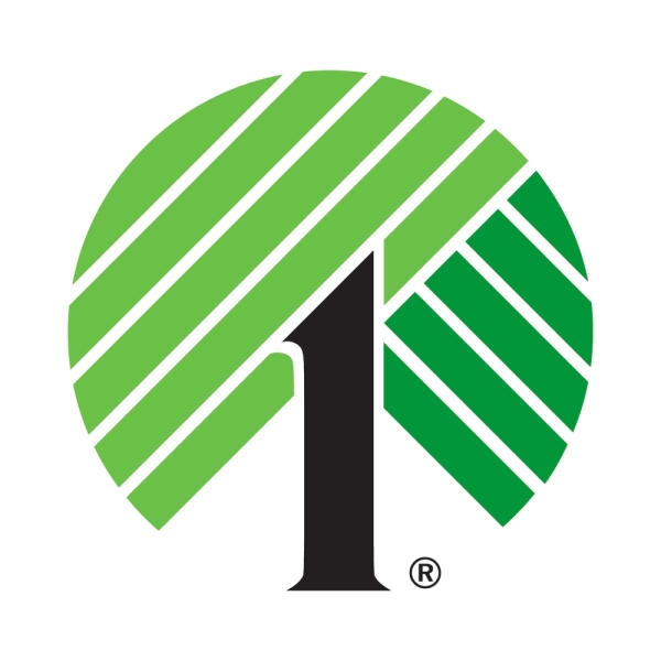Dollar Tree opened at 9511 FM 1488, Ste. 600, Magnolia, on Oct. 31. (Logo courtesy Dollar Tree)