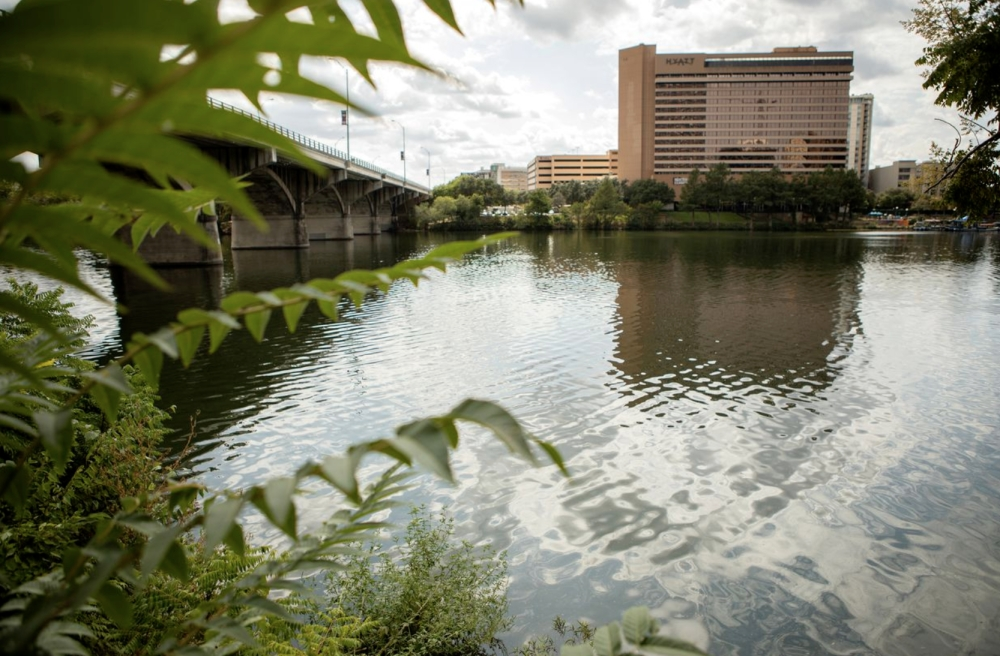 """Lady Bird Lake at Congress Avenue in Austin. Since late July, parts of the lake have been off limits due to high concentrations of toxic """"blue-green"""" algae. (Courtesy Miguel Gutierrez Jr./The Texas Tribune)"""