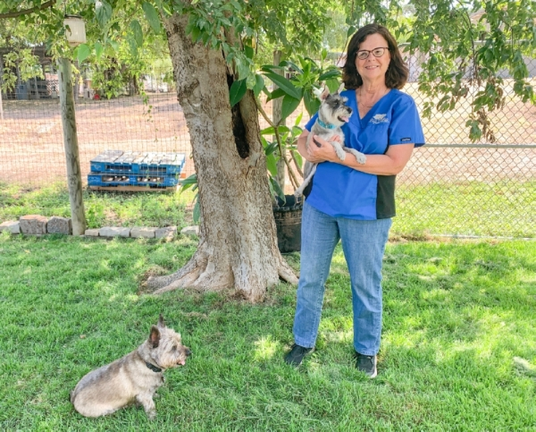 After 20 years, Buda's Big Oaks Kennel and Dog Park Co. still keeps dogs tired and happy. (Community Impact Newspaper)