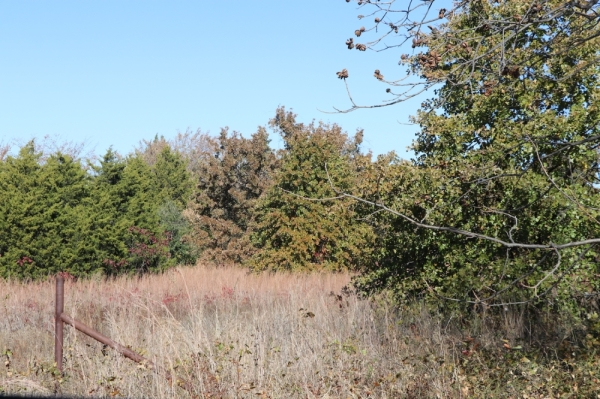Southlake recently acquired land to help preserve passive park space in the city. (courtesy city of Southlake)