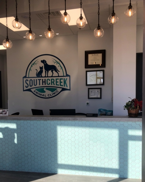 The veterinary hospital launched on Gosling Road in late December. Courtesy South Creek Animal Clinic
