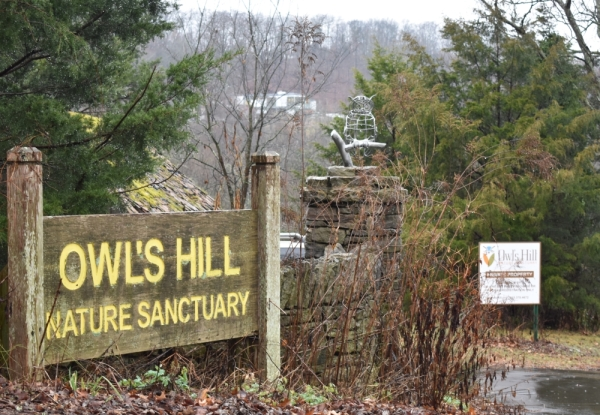 The Owl's Hill Nature Sanctuary in Brentwood will host Marshmallow Hikes this weekend. (Alex Hosey/Community Impact Newspaper)