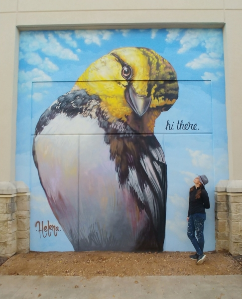 """Hi There"" By Helena Sue Martin features a golden-cheeked warbler native to Central Texas. (Courtesy Regina Pyne)"
