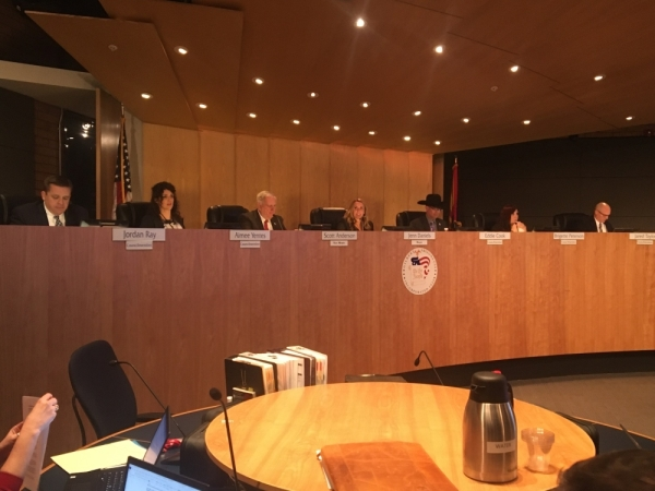 Jordan Ray, Gilbert Town Council
