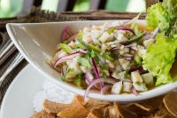 Palapas Seafood Bar serves Mexican-style seafood dishes, such as ceviche. (Courtesy Adobe Stock)