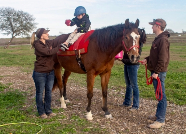 The vision of the nonprofit began in Dripping Springs with only one horse, six riders and a handful of volunteers,  (Rachal Russell/Community Impact Newspaper)
