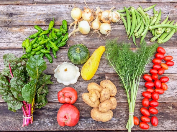 Get ready for spring by signing up for a share in a community supported agriculture program. (Courtesy Central Texas Farmers Co-op)