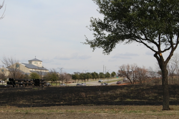 The Frisco Fire Department oversaw a prescribed burn Feb. 17 at Freedom Meadow, which is at the northeast corner of the Warren Sports Complex. (William C. Wadsack/Community Impact Newspaper)