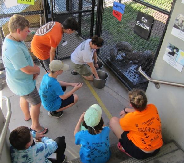 Wild Marvels, summer camp, Moody Gardens