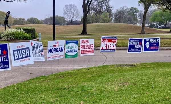 Voting results are coming in for the 2020 primaries. (Jen Para/Community Impact Newspaper)