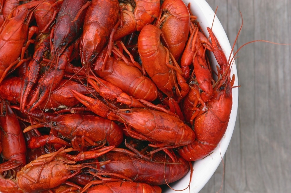 Food truck Cajun Comforts Crawfish & Seafood Co. relocated within the Katy area. (Courtesy Terry Poche/Adobe Stock)