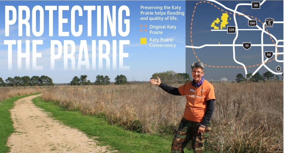 Volunteer Julie d'Ablaing teaches about the prairie at the Katy Prairie Conservancy's preserve. (Photo by Jen Para/Community Impact Newspaper; Design by José Dennis/Community Impact Newspaper)