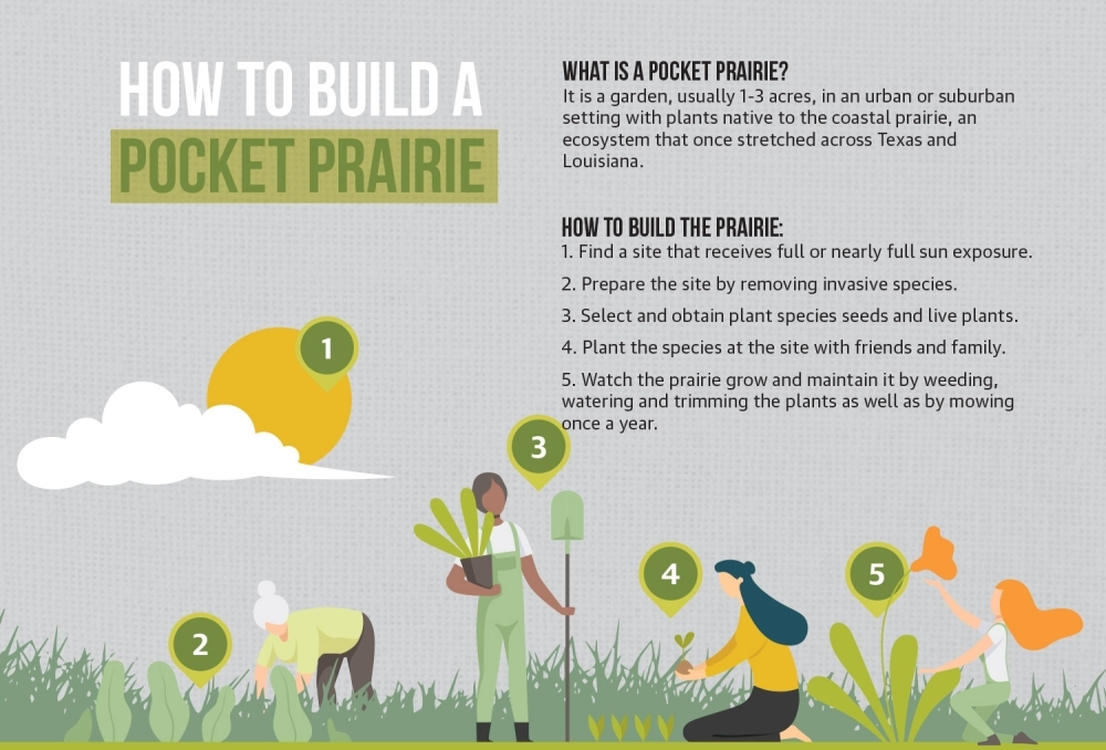 Pocket Prairie