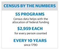 National Census Day is April 1, and Chandler officials are urging all residents to participate. (Graphic by Community Impact Newspaper, data from iCount 2020)