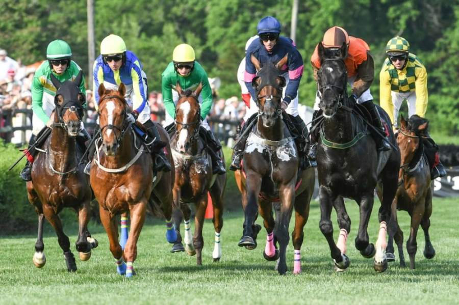 Iroquois Steeplechase will not be held this year at Percy Warner Park. (Courtesy of Iroquois Steeplechase)
