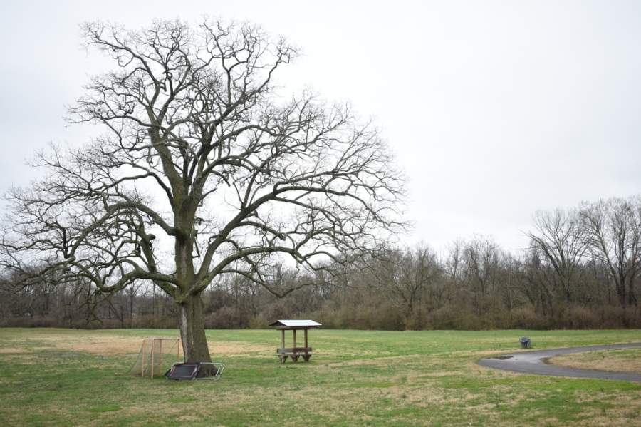 The Williamson County Parks and Recreation Department began reopening select park facilities with limited capacity and operating times on May 4 after COVID-19-related closures. (Alex Hosey/Community Impact Newspaper)