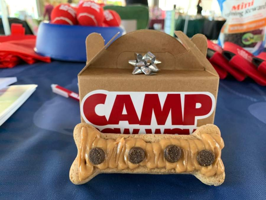 Camp Bow Wow is opening May 14 at 2849 Old Chocolate Bayou Road, Pearland. (Courtesy Camp Bow Wow)