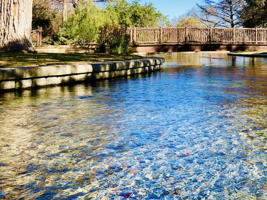 Comal Springs: Made up of numerous small and large springs in Landa Park, they are the largest springs in Texas. The springs are fed by the Edwards Aquifer and turn into the Comal River—one of the shortest rivers in the state at 3.25 miles long.  (Ian Pribanic/Community Impact Newspaper)