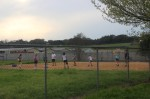 Adult softball and kickball activities are returning to Plano after a coronavirus-related hiatus. (Olivia Aldridge/Community Impact Newspaper)