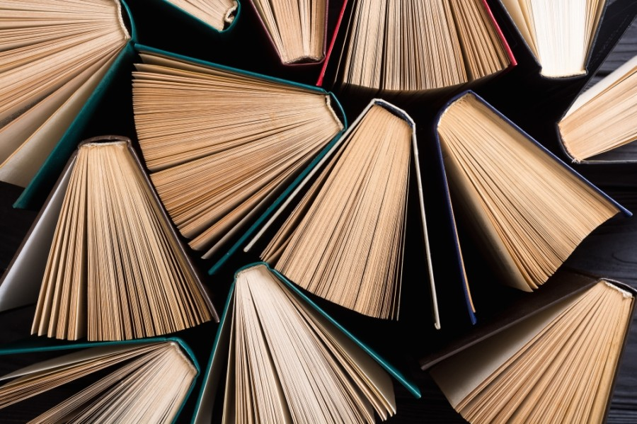 Pearland and Friendswood libraries will resume more regular services starting June 1. (Courtesy Adobe Stock)