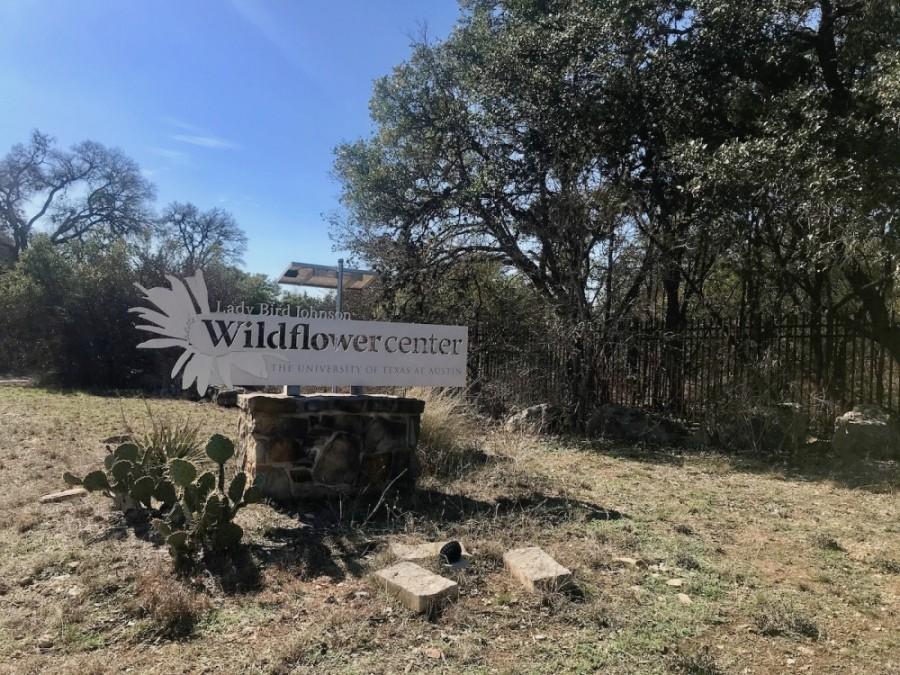 The Lady Bird Johnson Wildflower Center
