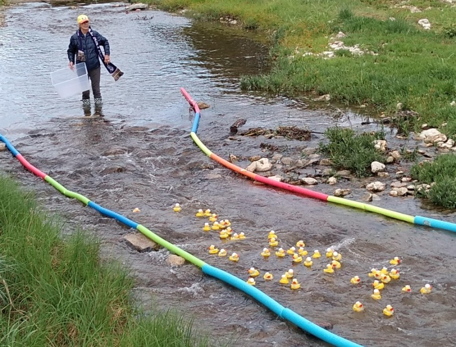 Marsi Liddell, an American Association of University Women Georgetown member, is pictured at the group's annual duck race fundraiser. (Courtesy American Association of University Women Georgetown)