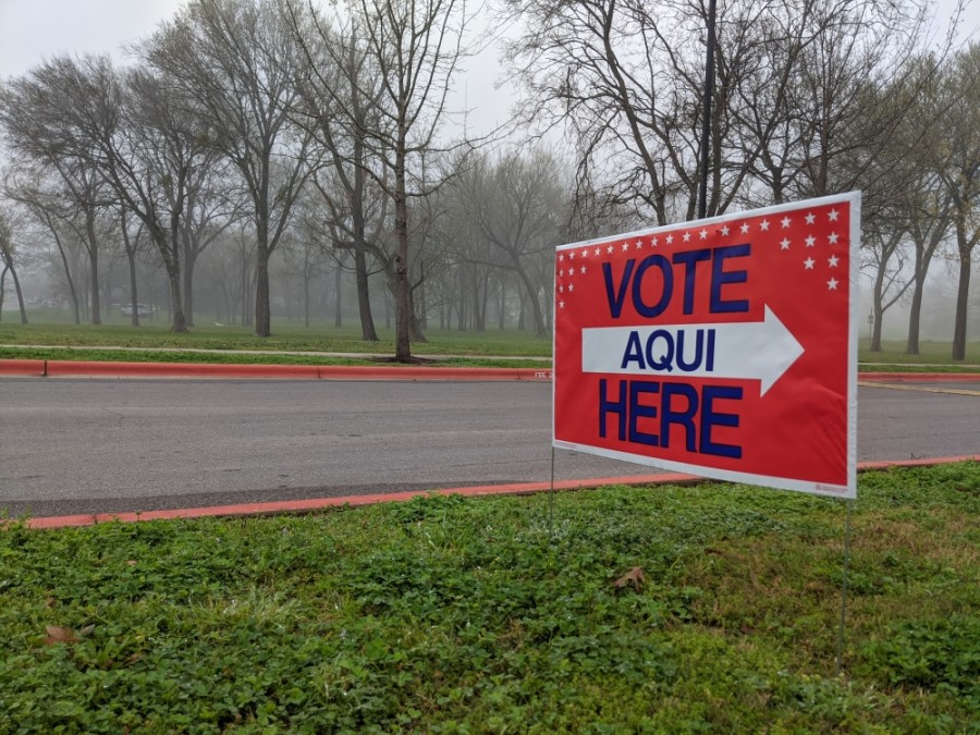 Early voting for the 2020 primary runoff and special elections begins June 29. (Iain Oldman/Community Impact Newspaper)