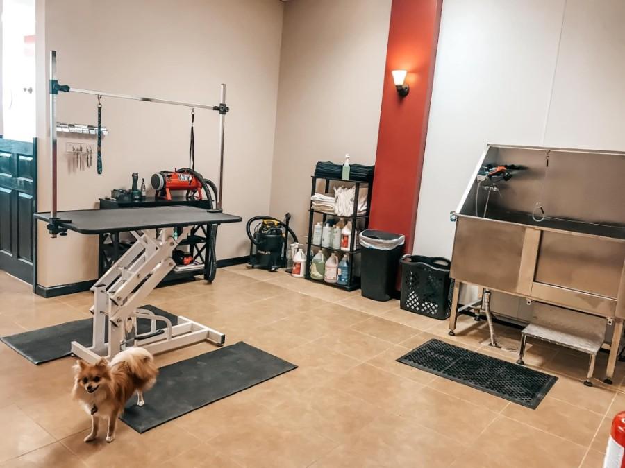 Ken's K-9's, a dog grooming service, opening at 18252 FM 1488, Ste.100, in Magnolia on June 2. (Courtest Ken's K-9's)