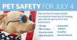 According to the Fort Worth Animal Shelter, more pets are lost on July 4 than any other day of the year. (Katherine Borey/Community Impact Newspaper)