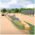 road with landscaping