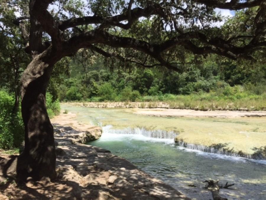 Bull Creek in Northwest Austin