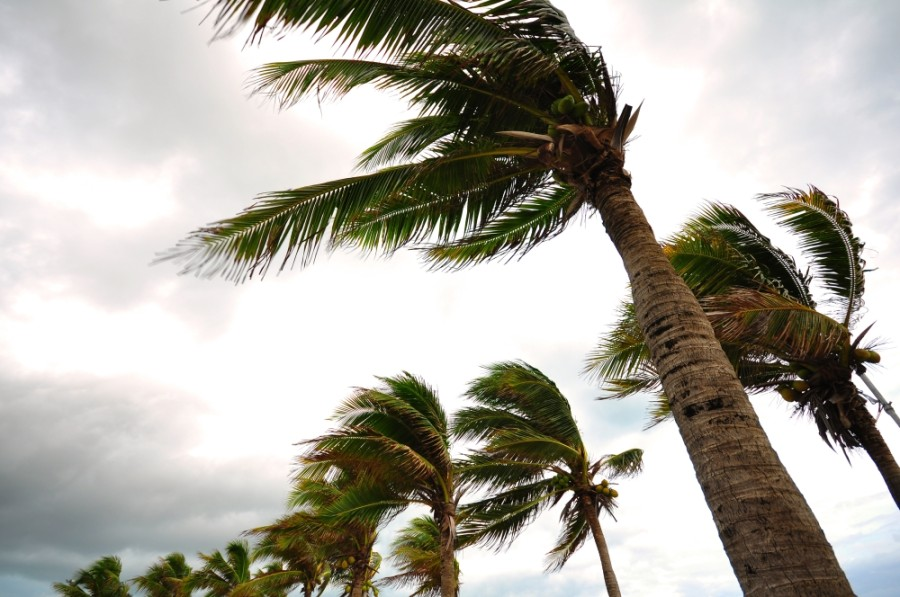 Brazoria County is expecting Hurricane Laura to have minimal effects on the county after recent National Weather Service updates, according to a release from the county. (Courtesy Adobe Stock)