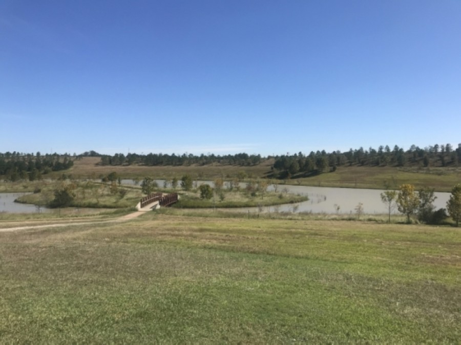 Houston City Council approved a $1.4 million project known as the Spellman Detention Basin on Sept. 2. It will be located next to the Willow Waterhole. (Emma Whalen/Community Impact Newspaper)