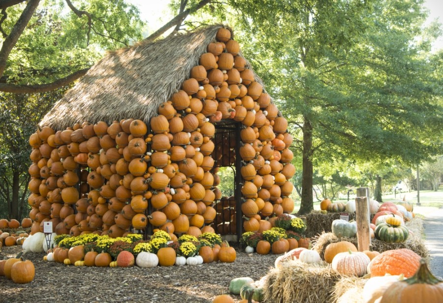 Cheekwood Harvest will open Sept. 17 in Nashville. (Courtesy Cheekwood Estate & Gardens)