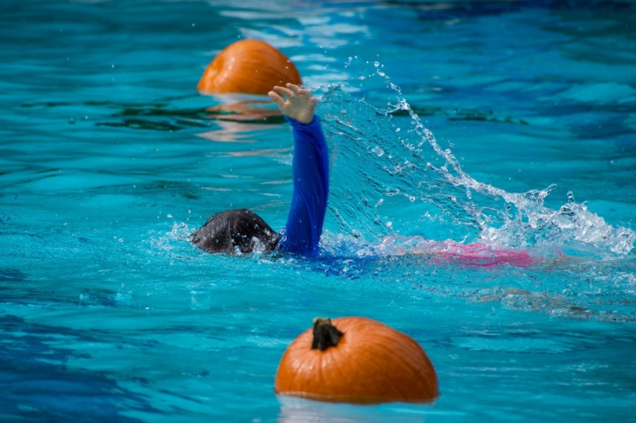 Add some festive flair to your weekend plans this October with the city of Pflugerville's annual floating pumpkin patch, hosted at the Gilleland Creek Pool. (Courtesy Pflugerville Parks and Recreation Department)