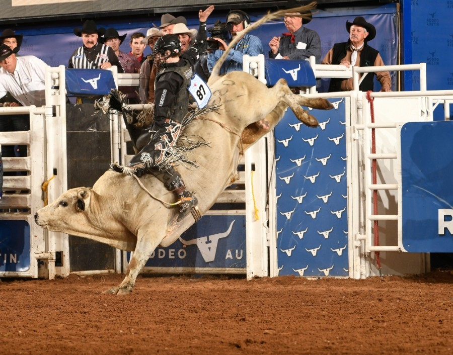 Rodeo Austin and the Round Rock Express will host a bull riding event, Bulls in the Ballpark, at Dell Diamond on Nov. 13-14. (Courtesy Rodeo Austin)