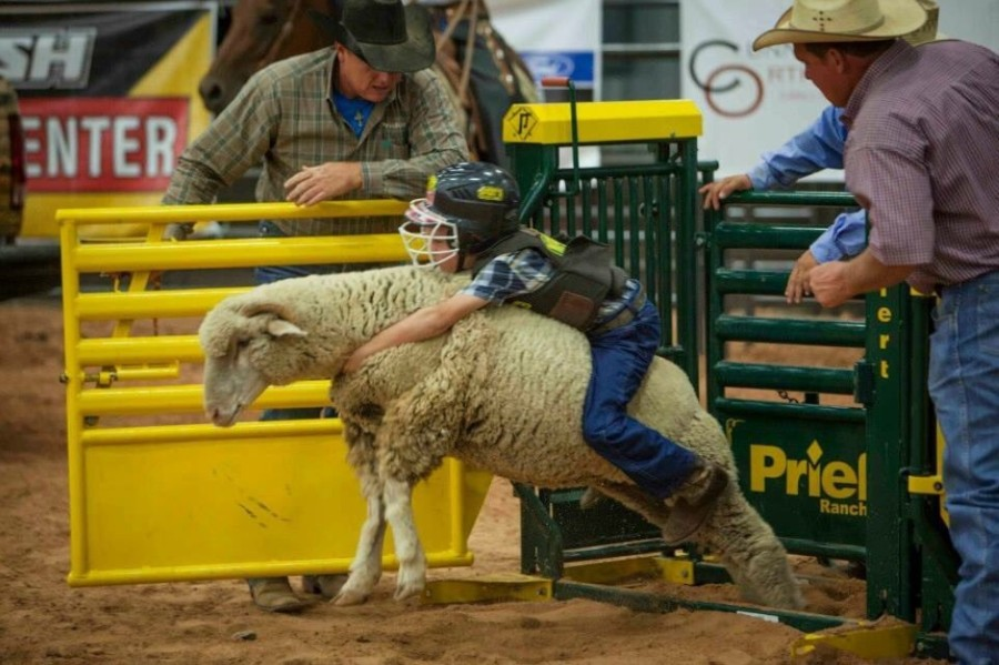 The Dripping Springs Fair and Rodeo will take place Oct. 16-17. (Courtesy Dripping Springs Fair and Rodeo)