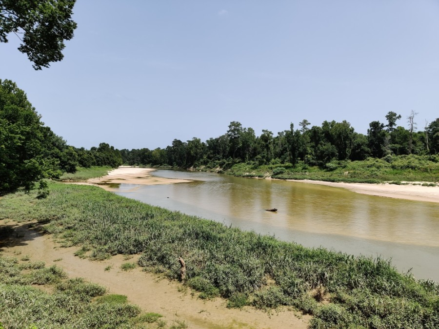 The Spring Creek Watershed Partnership is working to develop a protection plan addressing water quality issues along the waterway and its tributaries. (Ben Thompson/Community Impact Newspaper)