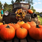 "Magnolia's First Baptist Church will host its annual pumpkin patch, featuring food and other activities, such as hay rides, ""punkin' chunkin'"" and photo opportunities. (Courtesy Magnolia's First Baptist Church)"