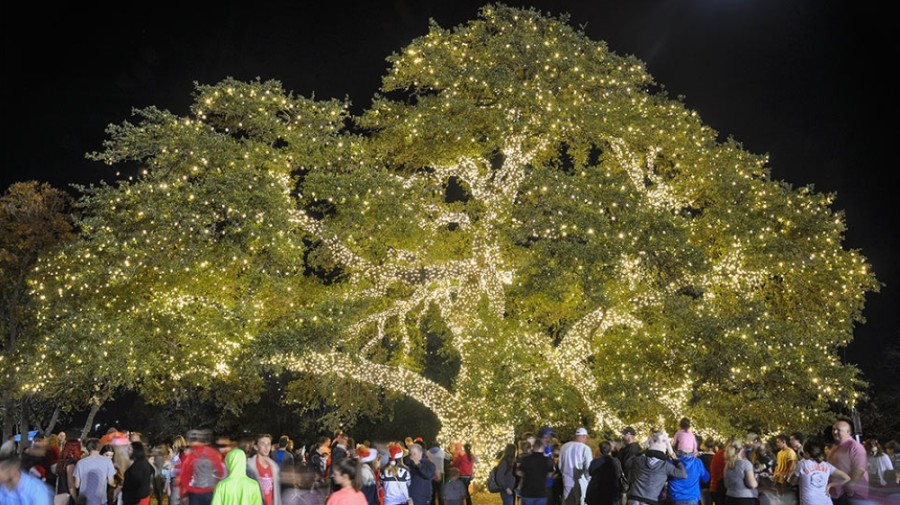 Cedar Park will hold photo opportunities at Heritage Oak Park with the light-lit tree and Santa's sleigh. (Courtesy city of Cedar Park)