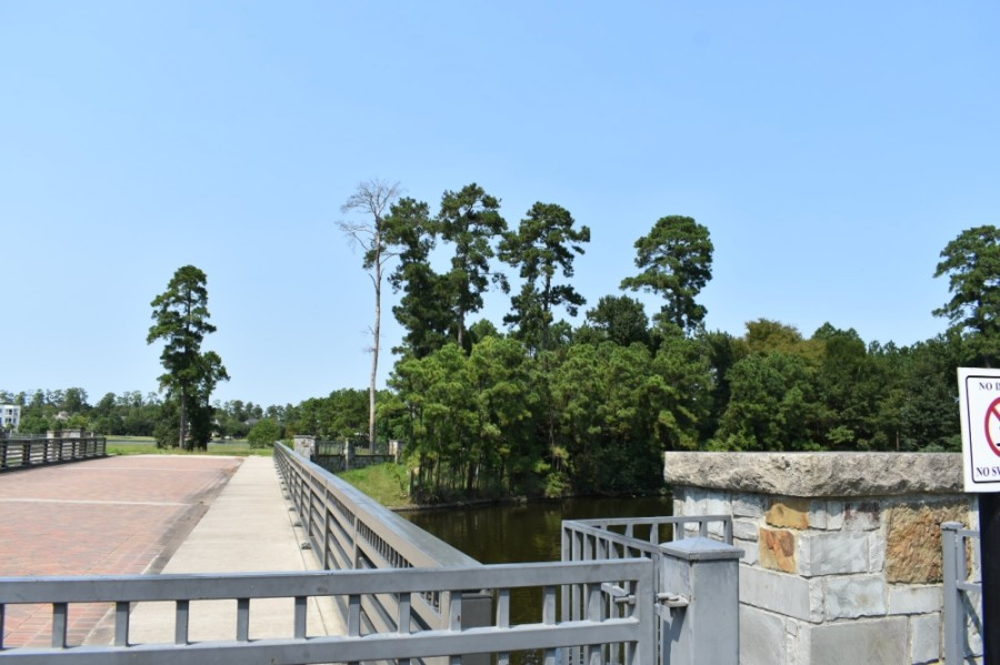 The Lake Woodlands island known locally as Eagle Island or Mitchell Island is part of the East Shore neighborhood. (Vanessa Holt/Community Impact Newspaper)