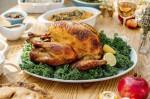 Photo of a turkey dinner