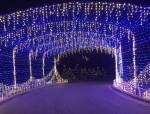 Trail of Lights (Nicholas Cicale/Community Impact Newspaper)
