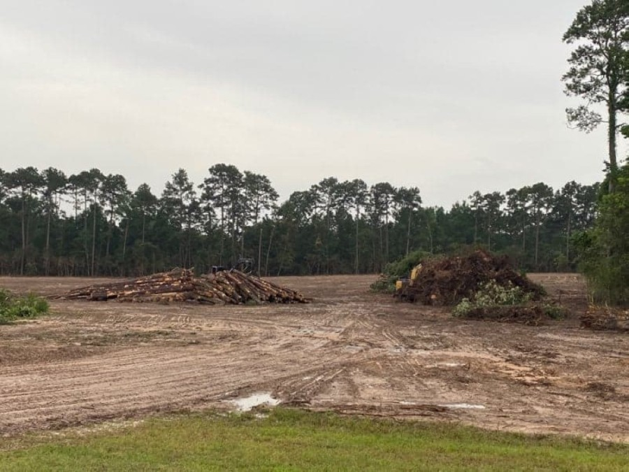 Trendmaker Homes has cleared abut 95 acres of trees just south of Pine Valley Drive. (Courtesy Steve Stewart)