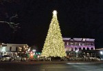 The Franklin Christmas tree will be lit through the month of December. (Lindsay Scott/Community Impact Newspaper)