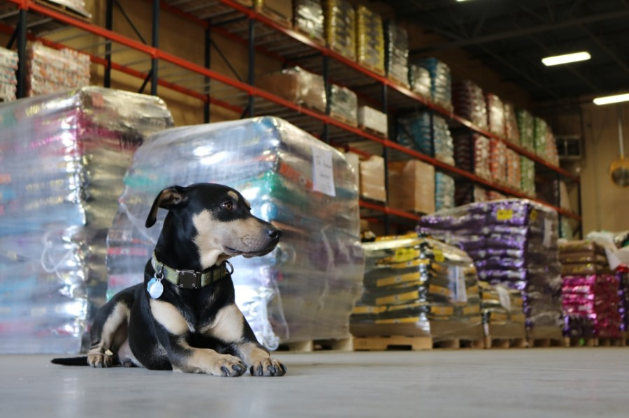 Tomlinson's Feed donates pet food to local shelters annually through its Pound4Pound food drive. (Courtesy Kim Kenney)