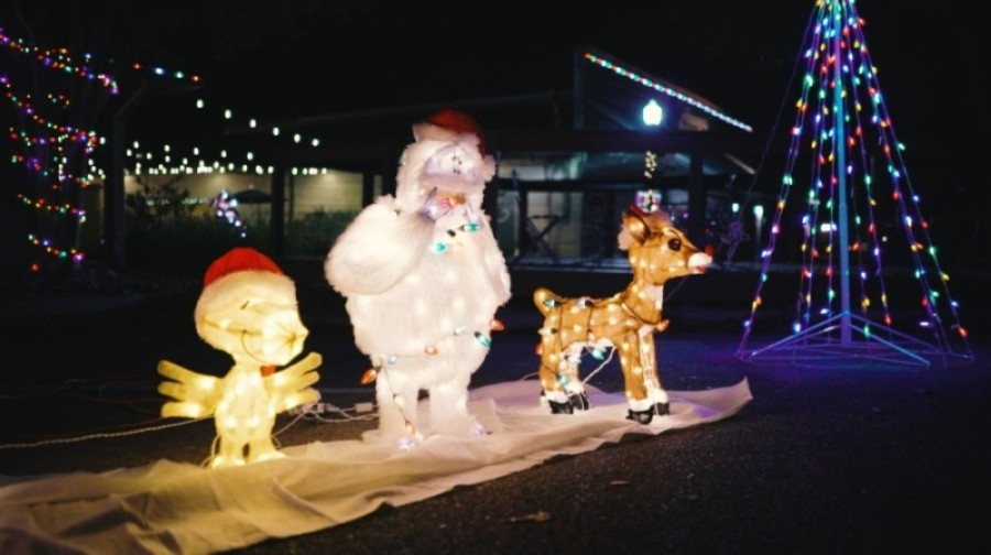 The Pfestival of Lights will feature decorations, holiday lights, a Christmas tree viewing, singing carolers and goody bags for attendees. (Courtesy Pflugerville Parks and Recreation)