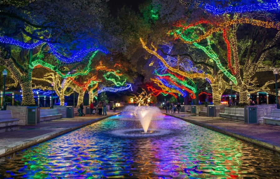 Zoo Lights (Courtesy Houston Zoo)
