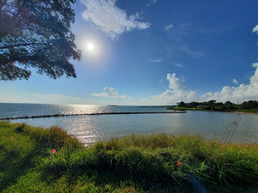 Since its establishment in 1987, Galveston Bay Foundation has conserved more than 8,000 acres of coastal habitat through property acquisitions and conservation easements. (Courtesy Galveston Bay Foundation)